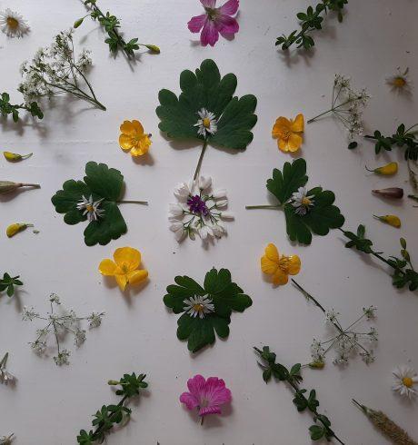 A flower mandala, from LuminateAtHome